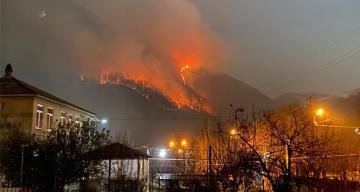 Rusya'da yeni yıl kutlamalarında atılan havai fişekler orman yangınına neden oldu